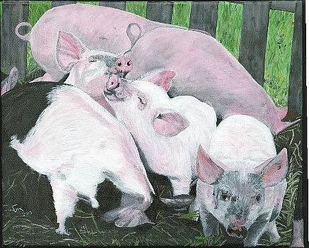 Pigglies Wigglies at Solstice Farm by Susan Fox