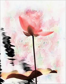 Pink Lotus by Carol Kinkead