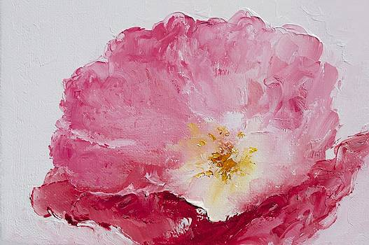Jan Matson - Pink Poppy