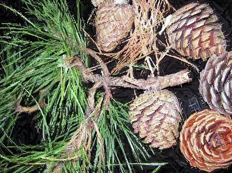 Susan Carella - Pitch Pine Cone