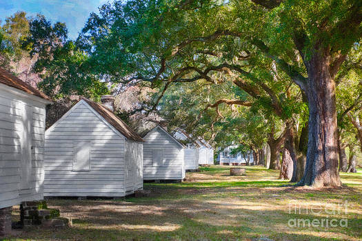Dale Powell - Plantation Slave Cabins