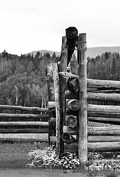 Pole Corral  by Juls Adams