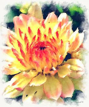 Princess Bloom by Lemuel Conde