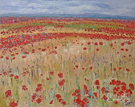 Provence Poppies by Barbara Anna Knauf