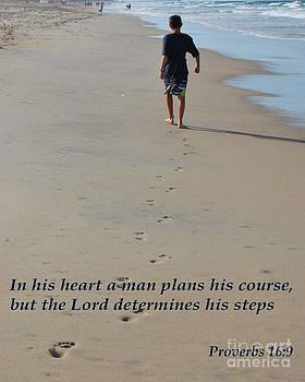 Proverbs 16 by Bob Sample