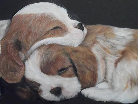 Puppies by Virginia Butler