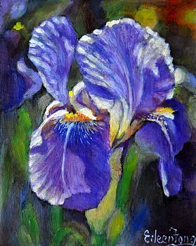 Purple Iris by Eileen  Fong