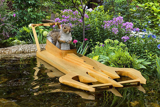 Recreational Ride On Fun Day by Squirrel