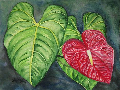 Angie Hamlin - Red Anthurium