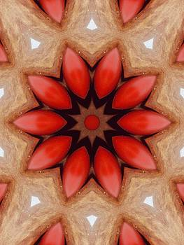 Red Chocolate Flower by Annette Allman