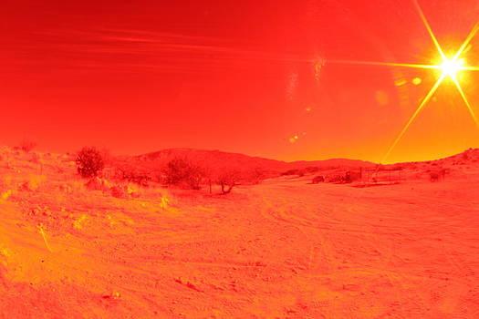 Red by David S Reynolds
