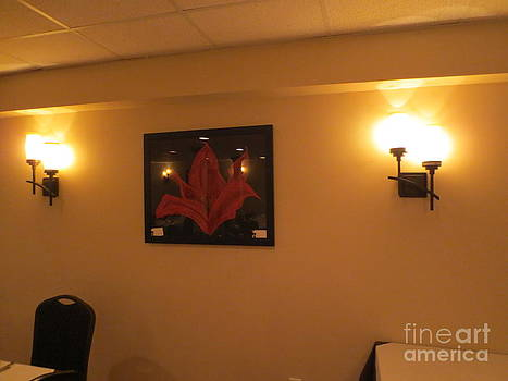 Mezzaluna Allendale NJ Red Lily by Sandra Spincola
