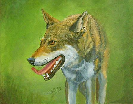 Red Wolf by Ruth Seal