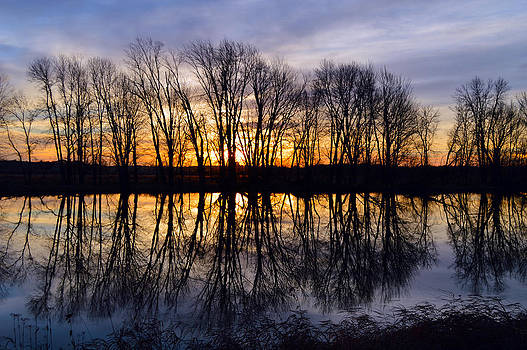 Reflection by Timothy Thornton