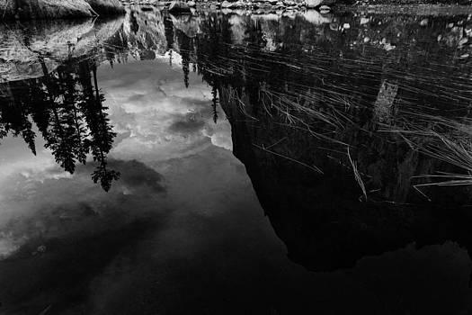 Reflections by D Scott Clark