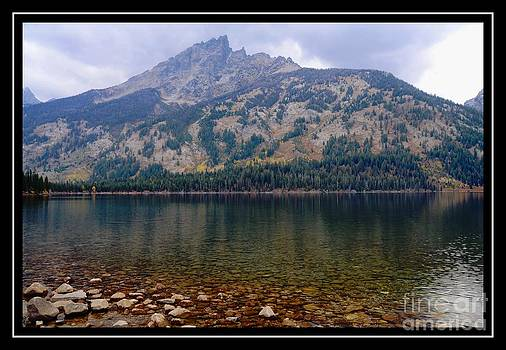 Reflections by Kathleen Struckle