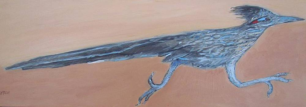 Roadrunner by Sandra Lytch