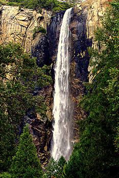 Lynn Bawden - Roar Of The Falls