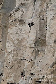 Mark Newman - Rock Climber On El Capitan
