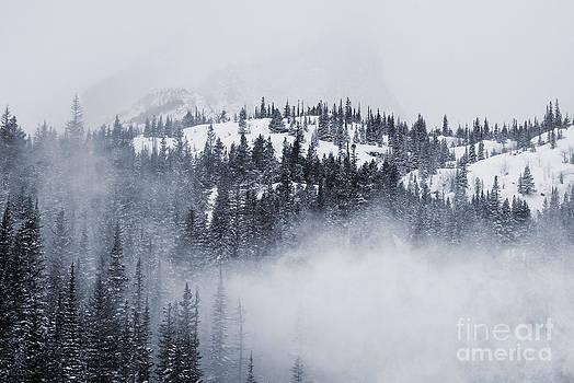 Steve Krull - Rocky Mountain National Park