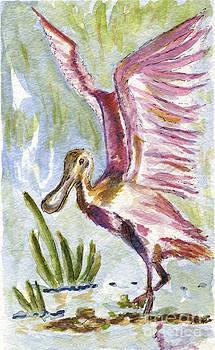 Roseate Spoonbill by Andrea Rubinstein