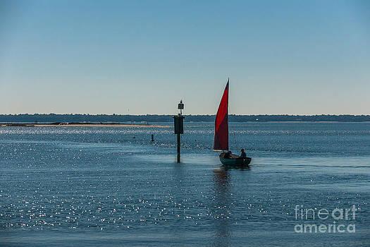 Dale Powell - Sail Away