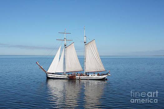 Sail Boat by Sara  Meijer