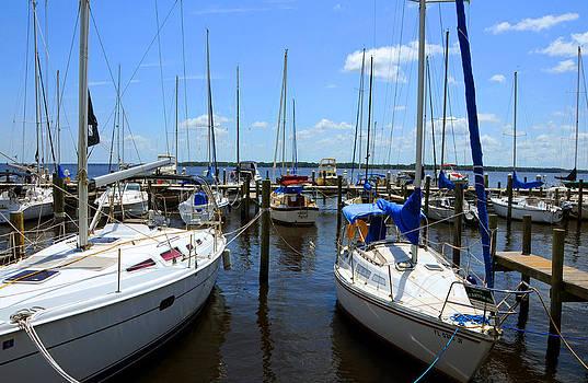 Sailboats by Larry Van Valkenburgh