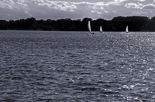 Three Sailboats on Lake Calhoun by Lonnie Paulson