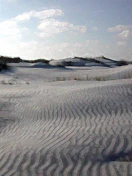Sand Dunes by Bob Richter