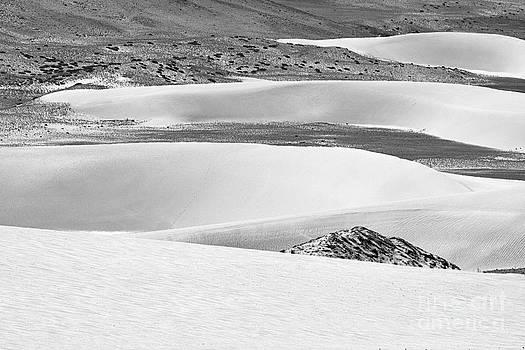 Sand Dunes by Hitendra SINKAR