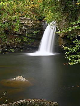 Savage Falls by Ben  Keys Jr