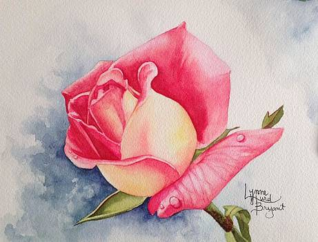 Scent of the Rose 1B by Lynne Hurd Bryant