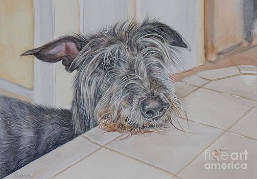 Scottish Deerhound by Gail Dolphin