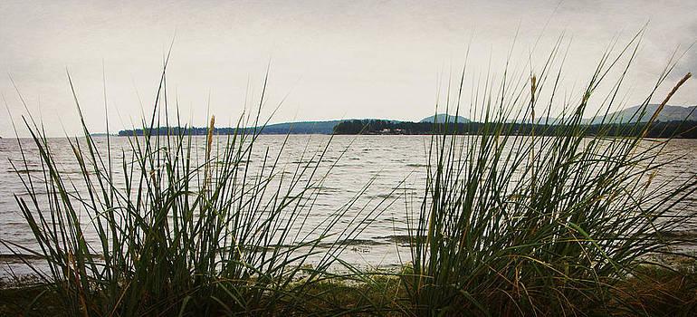 Marilyn Wilson - Sea View