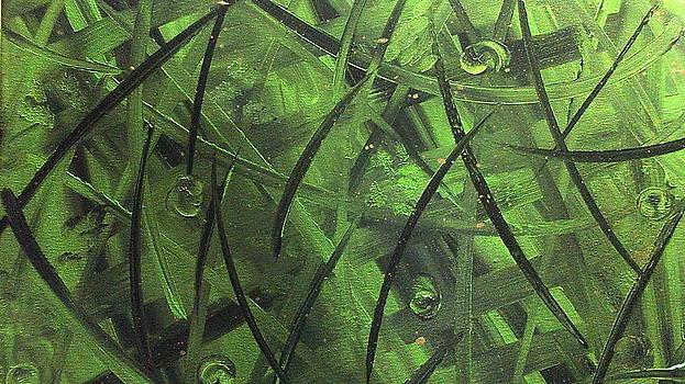 Seaweed by Lisa Williams