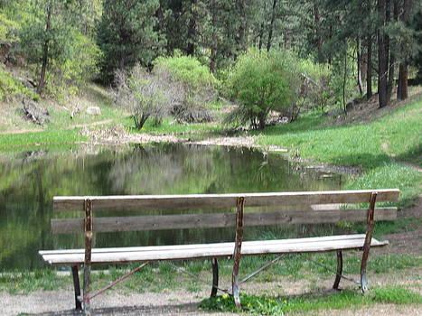 Serenity At Pond by Tammy Sutherland
