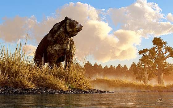 Daniel Eskridge - Short Faced Bear