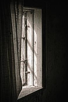 Shying From The Light by Odd Jeppesen