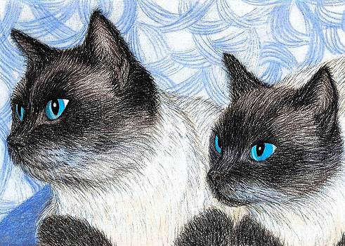 Siamese Cats by Jo Prevost