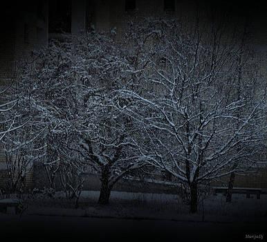 Silent night by Marija Djedovic