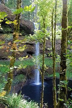 Silver Falls by Jane Girardot