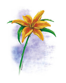 Single Tiger Lily by Pat Thompson