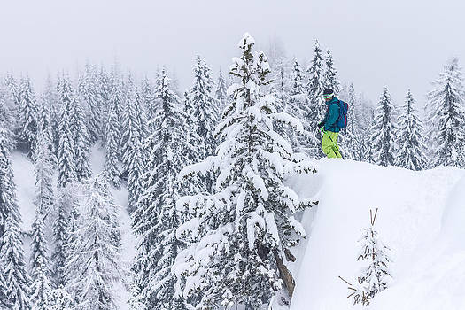 Skiier standing in a snowcovered forest by Leander Nardin