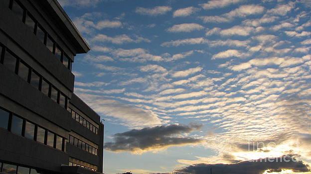Sky by Laura Chorba