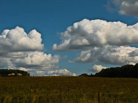Sky by Paulina Szajek