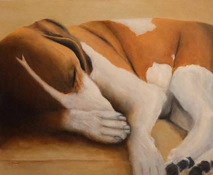 Sleeping Dog by Joan Glinert