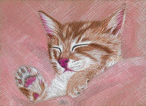 Sleeping Kitty by Jo Prevost
