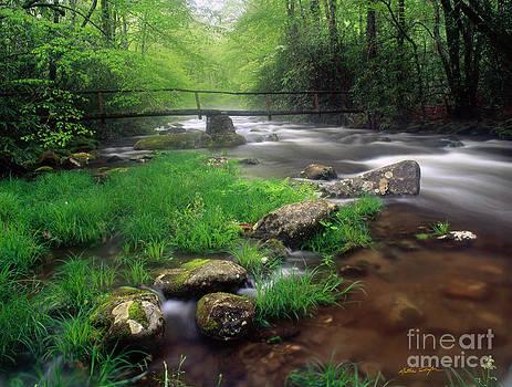 Smoky Mountain Stream 2009 by Matthew Turlington