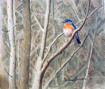 Something Blue by Marlene Schwartz Massey